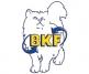 BKF-Schule GmbH